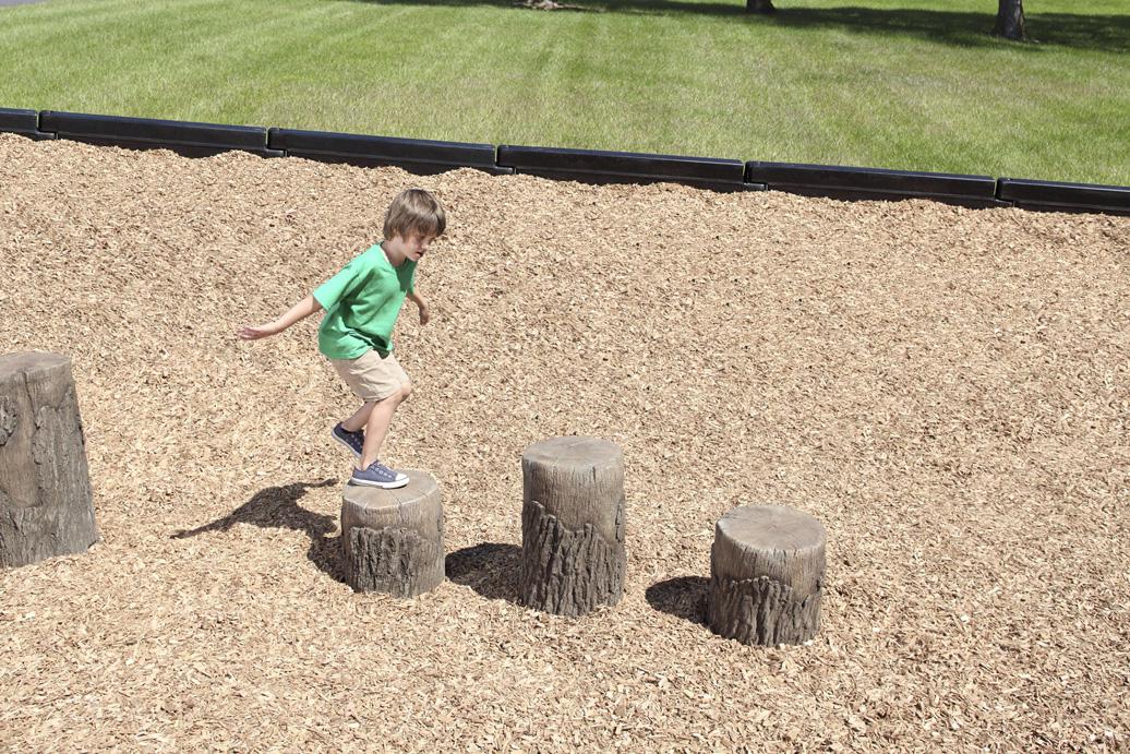 tree stumps - balance - natural
