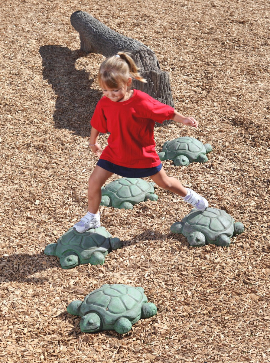Stepping Turtles - commercial playground equipment - lifestyle