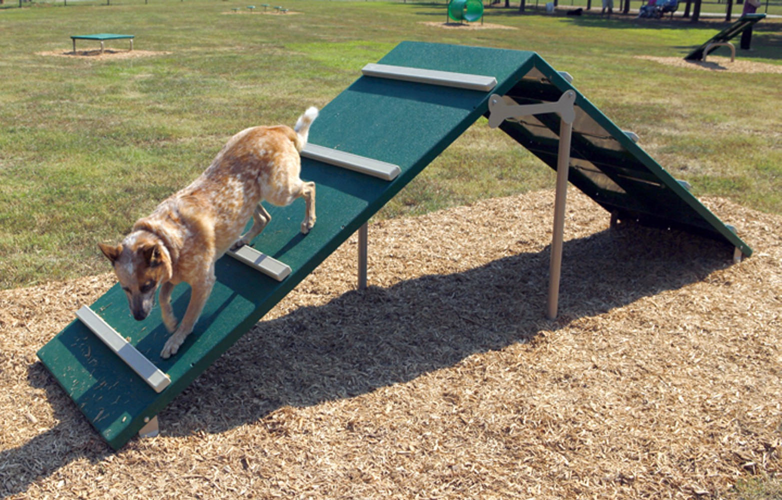 King of the Hill - Dog Park Equipment - American Parks Company