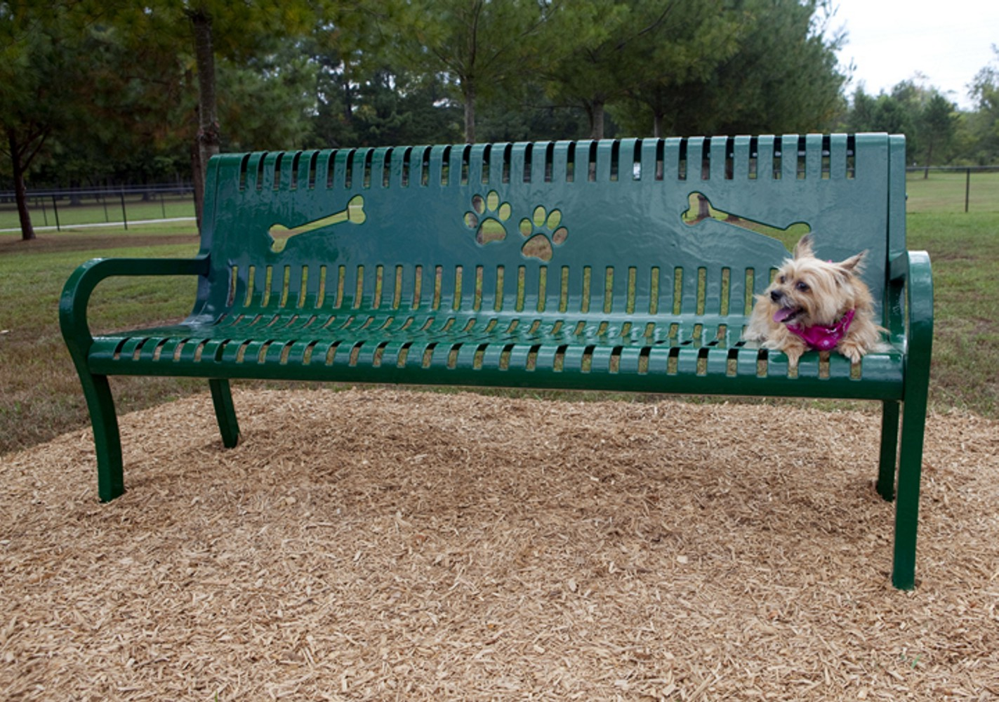 Pooch Perch Bench - Dog Park Equipment - American Parks Company