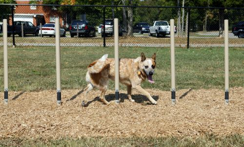 Weave Posts - Dog Park Equipment - American Parks Company
