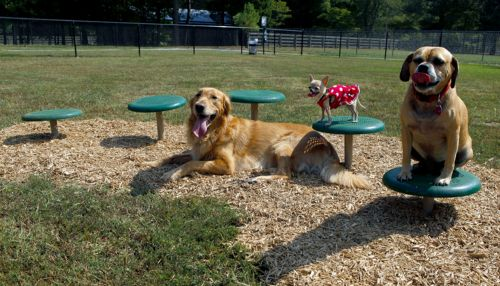 Stepping Paws - Dog Park Equipment - American Parks Company