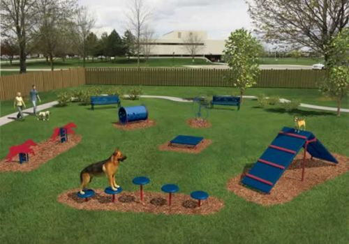 Bark Park Intermediate