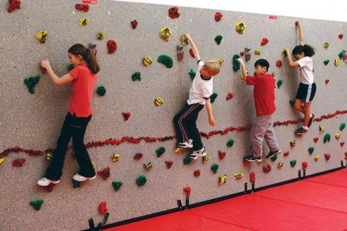 Standard Climbing Wall Panel