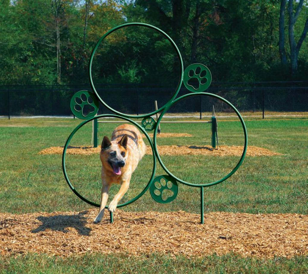 Hoop Jump - Dog Park Equipment