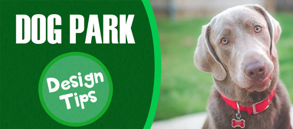 How to Build a Fun Dog Park In Your Community